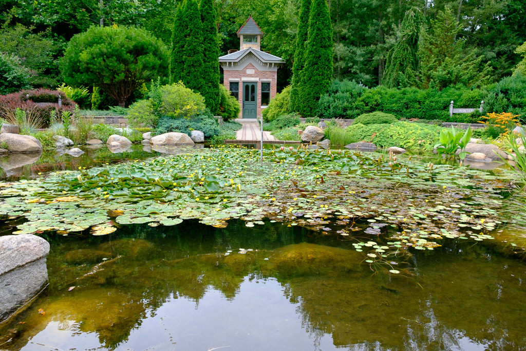 photograph of the round goldfish pond at the Gardens-16
