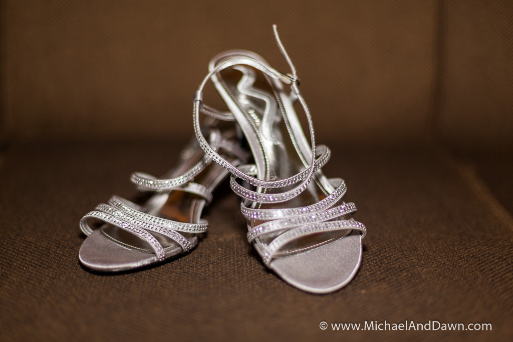 picture of bridal shoes