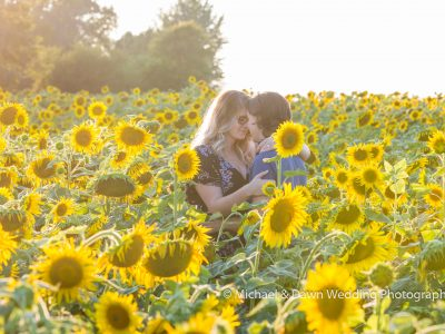 picture of engaged couple standing in a sunflower field